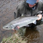A good May fish from the Tummel taken on a small fly.