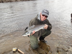 Tummel Springer on a Park Shrimp Tube